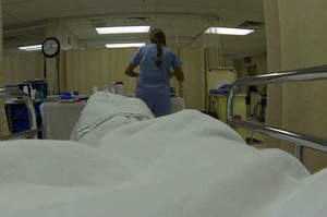 L'OSS non può essere assimilabile alle professioni sanitarie