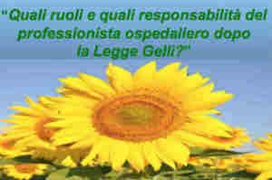 Legge Gelli, ruoli e responsabilità del professionista