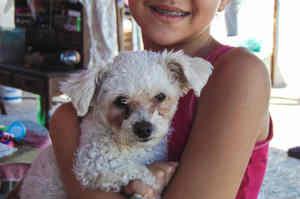 Benefici della Pet therapy sull'uomo