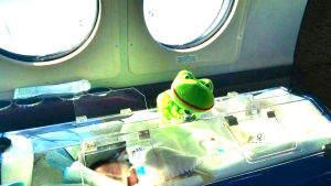 neonato in culla in aereo